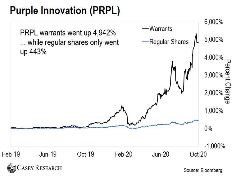 Purple Innovation Chart